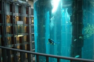 лифт для пассажиров в аквариуме